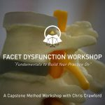 Facet Dysfunction Seminar - Manual Therapy Workshop